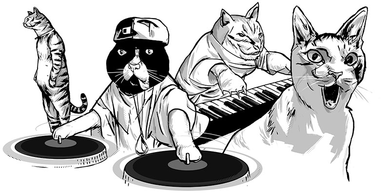 08_Cats Of YouTube